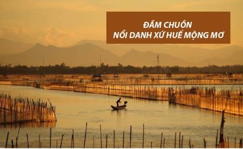 dam-chuon-hue